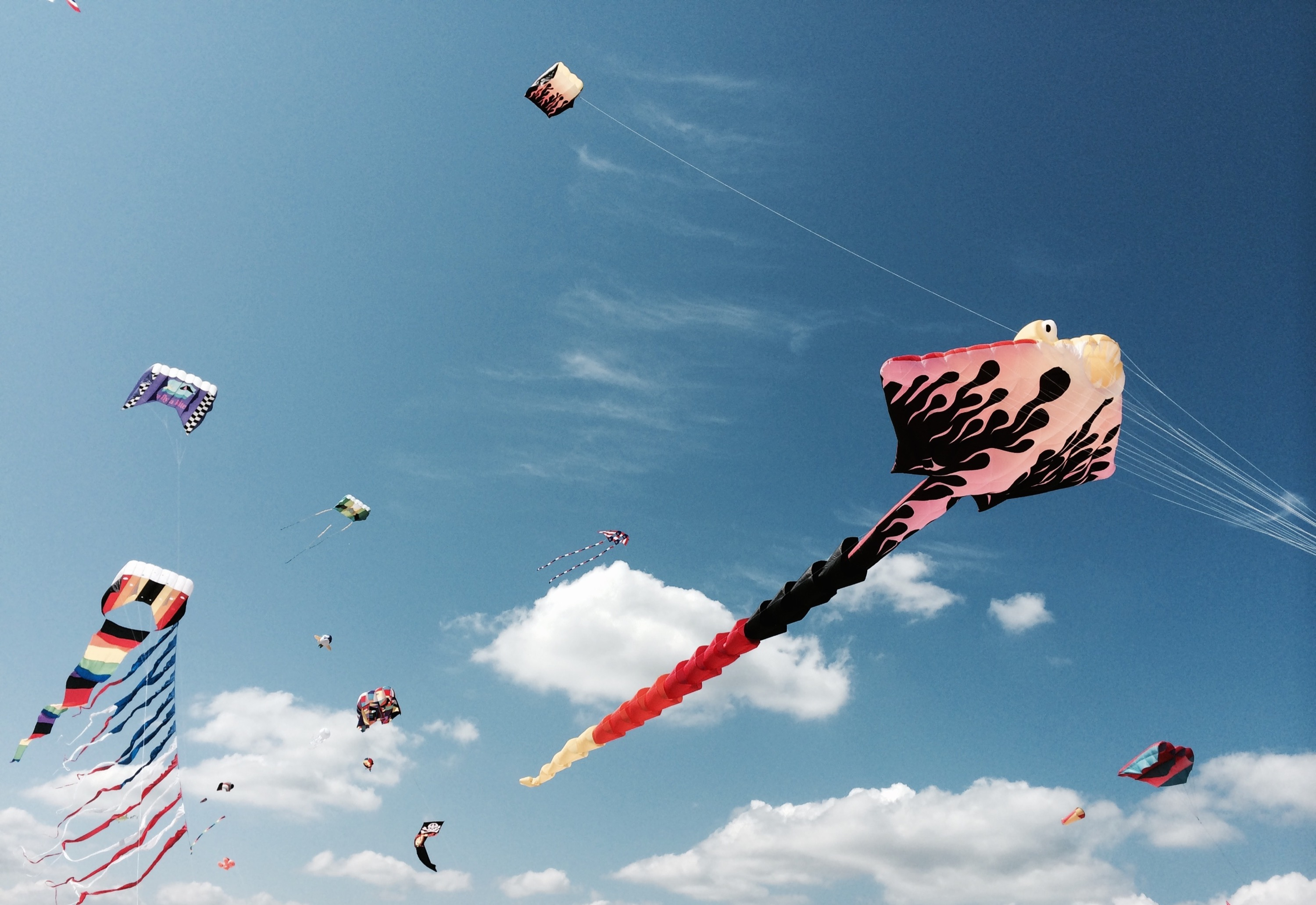 Flying Kite Series