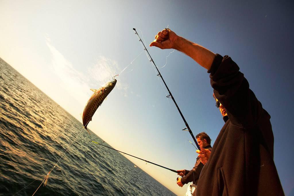 Copie de 1/2 journée pêche et bateau MER