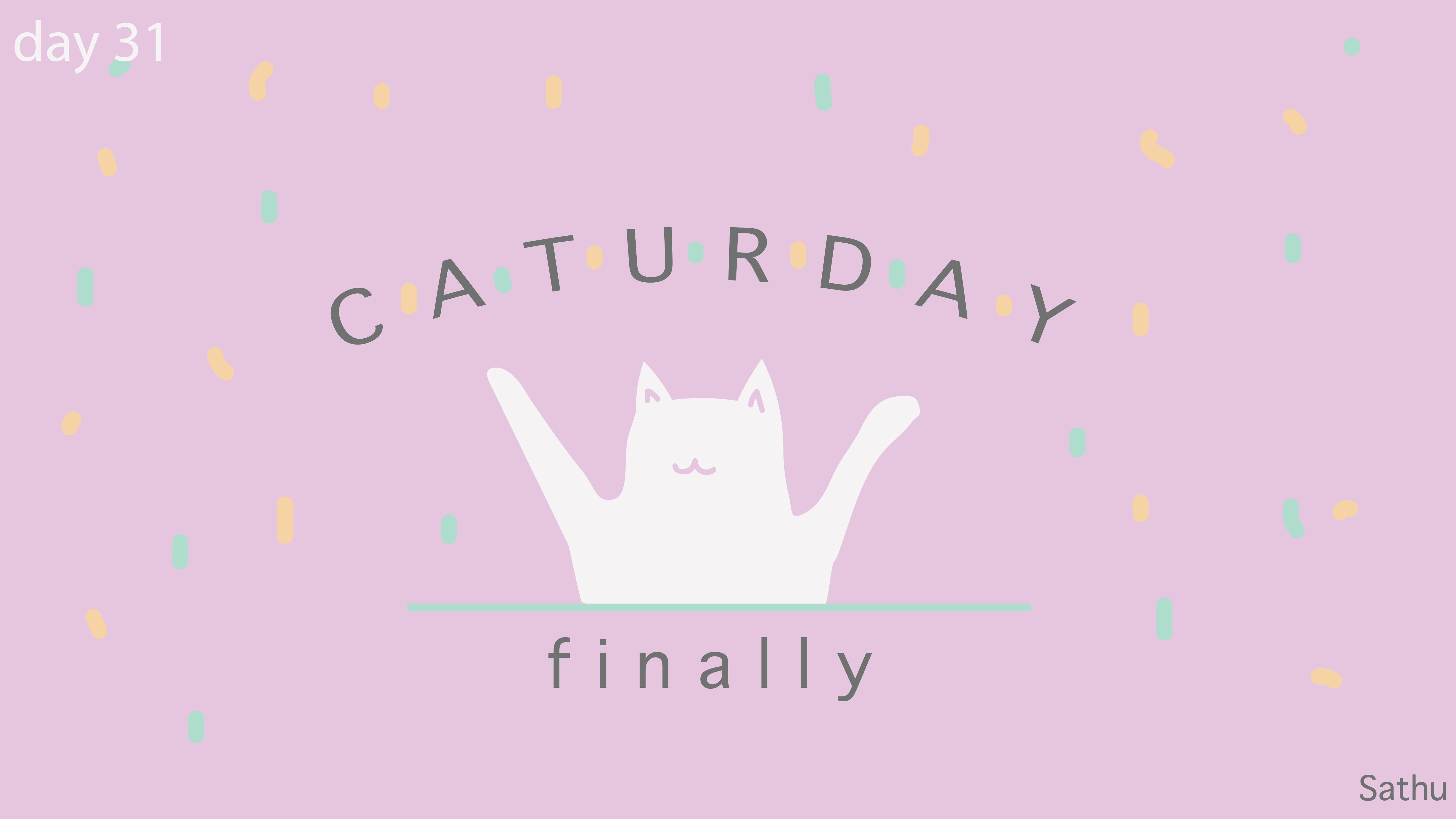 [cat]day3-01