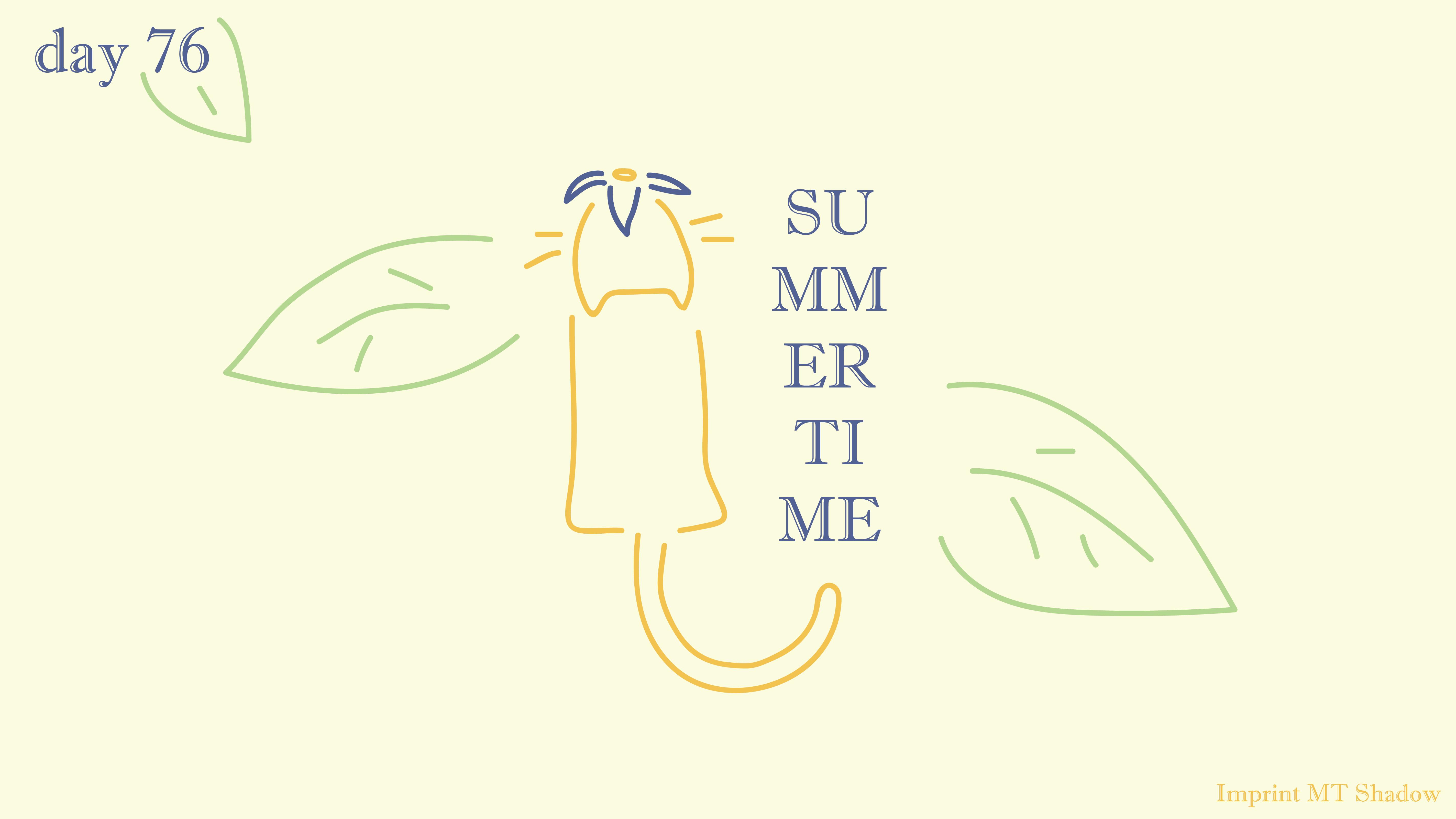 [cat]day7-06