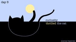 [cat]day1-03
