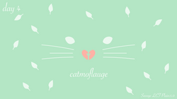 [cat]day1-04