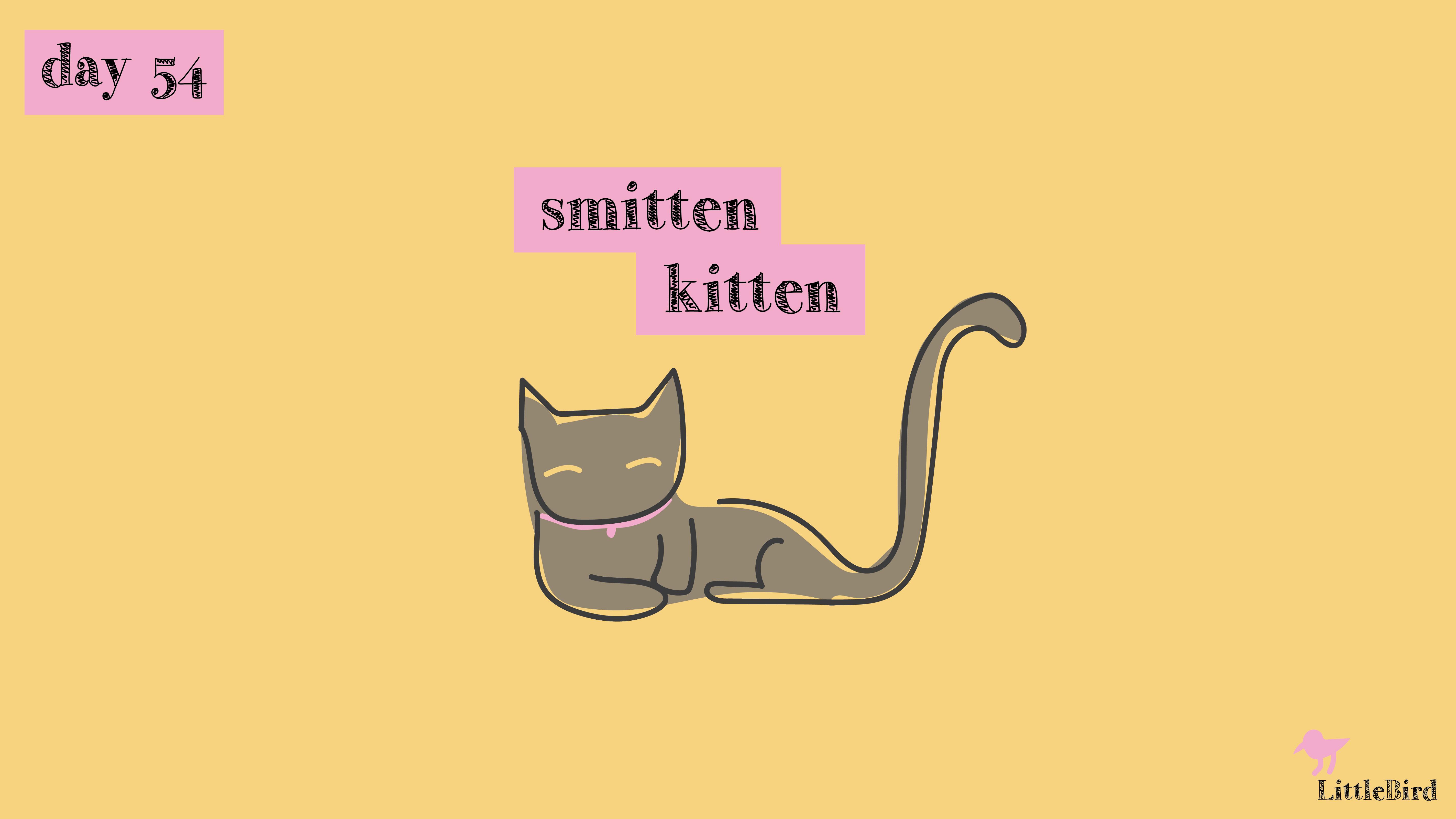 [cat]day5-04