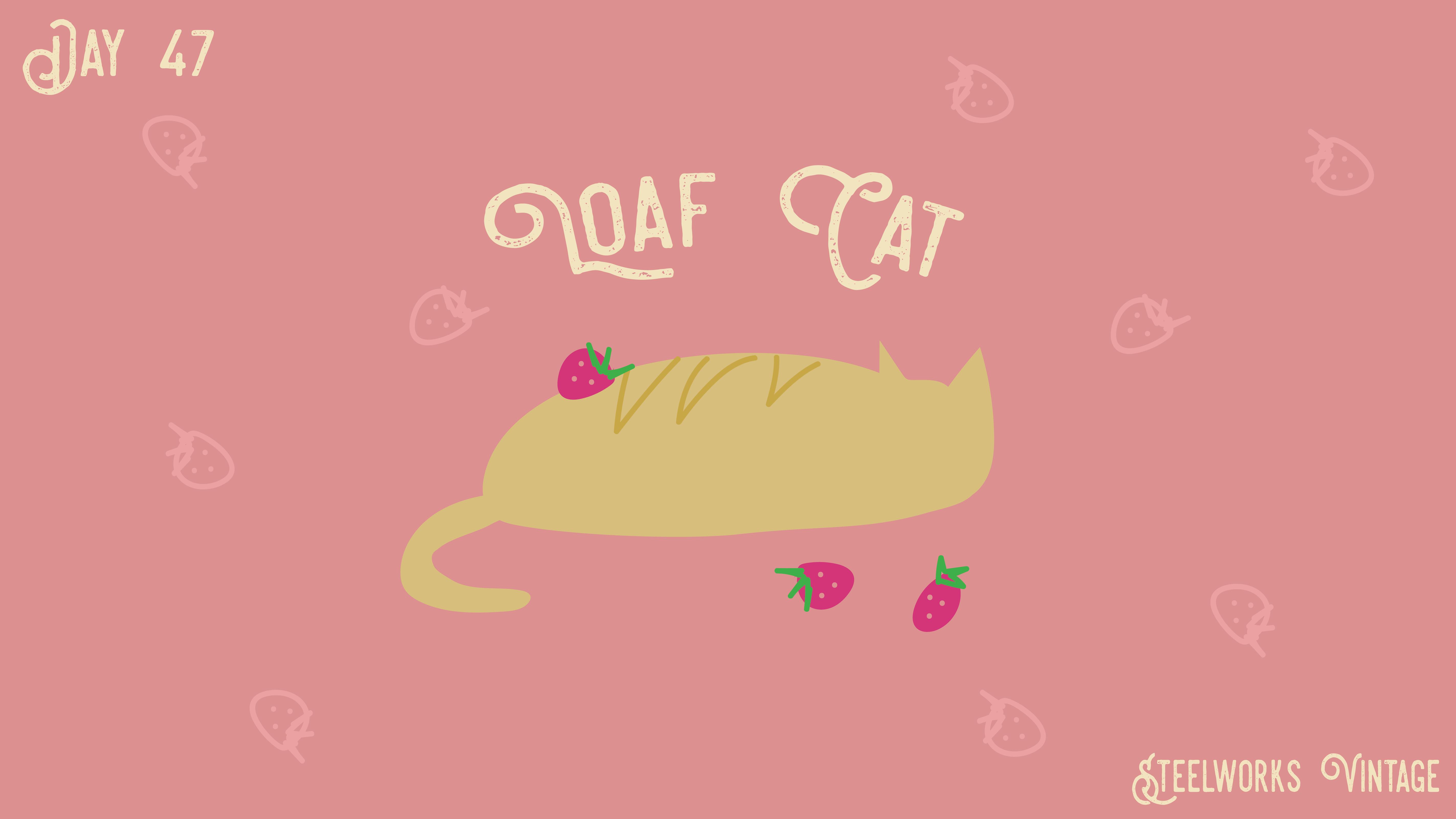 [cat]day4-07