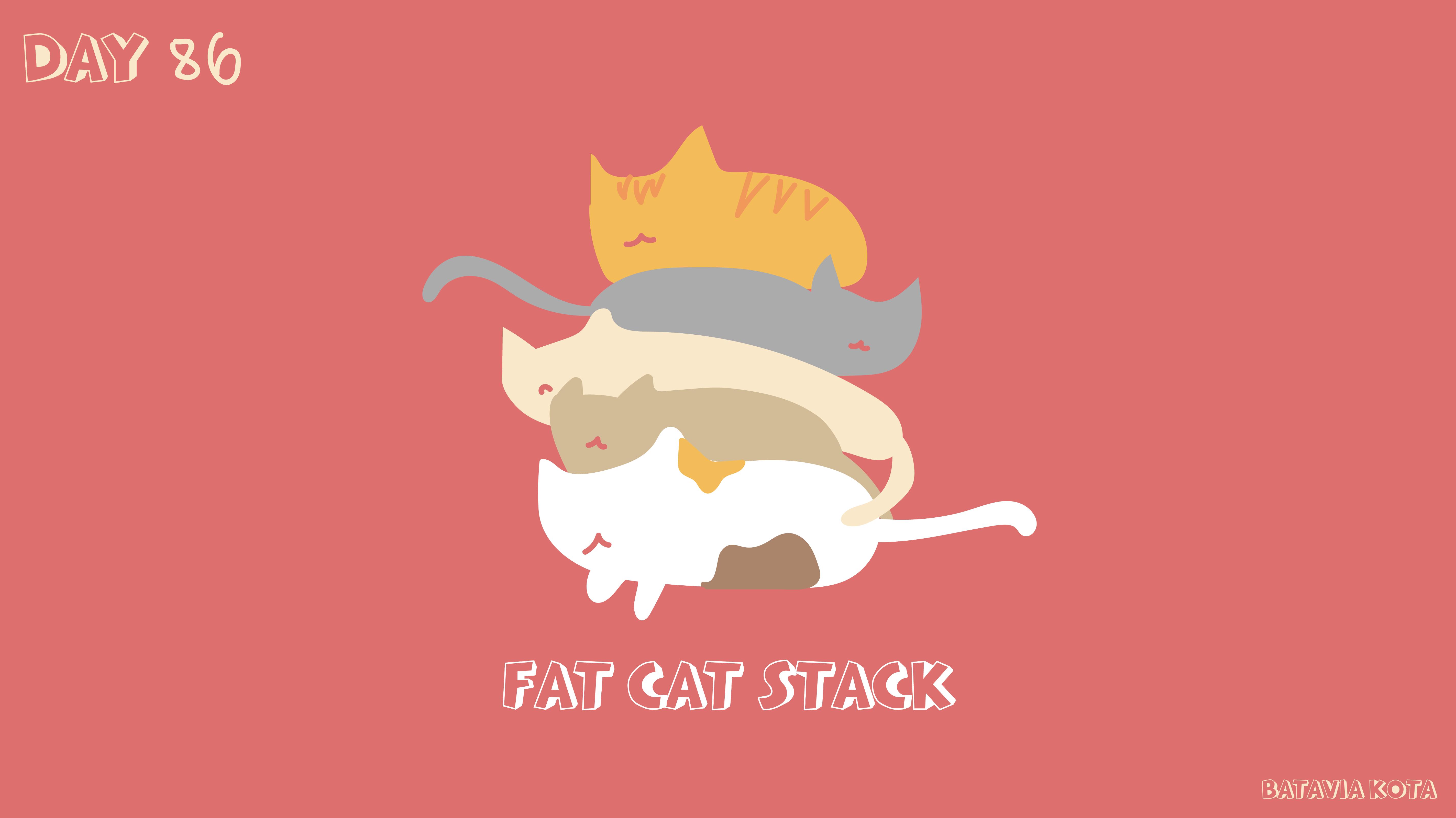 [cat]day8-06