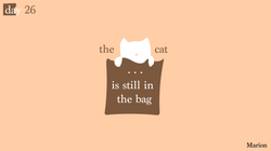 [cat]day2-06