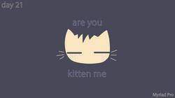 [cat]day2-01