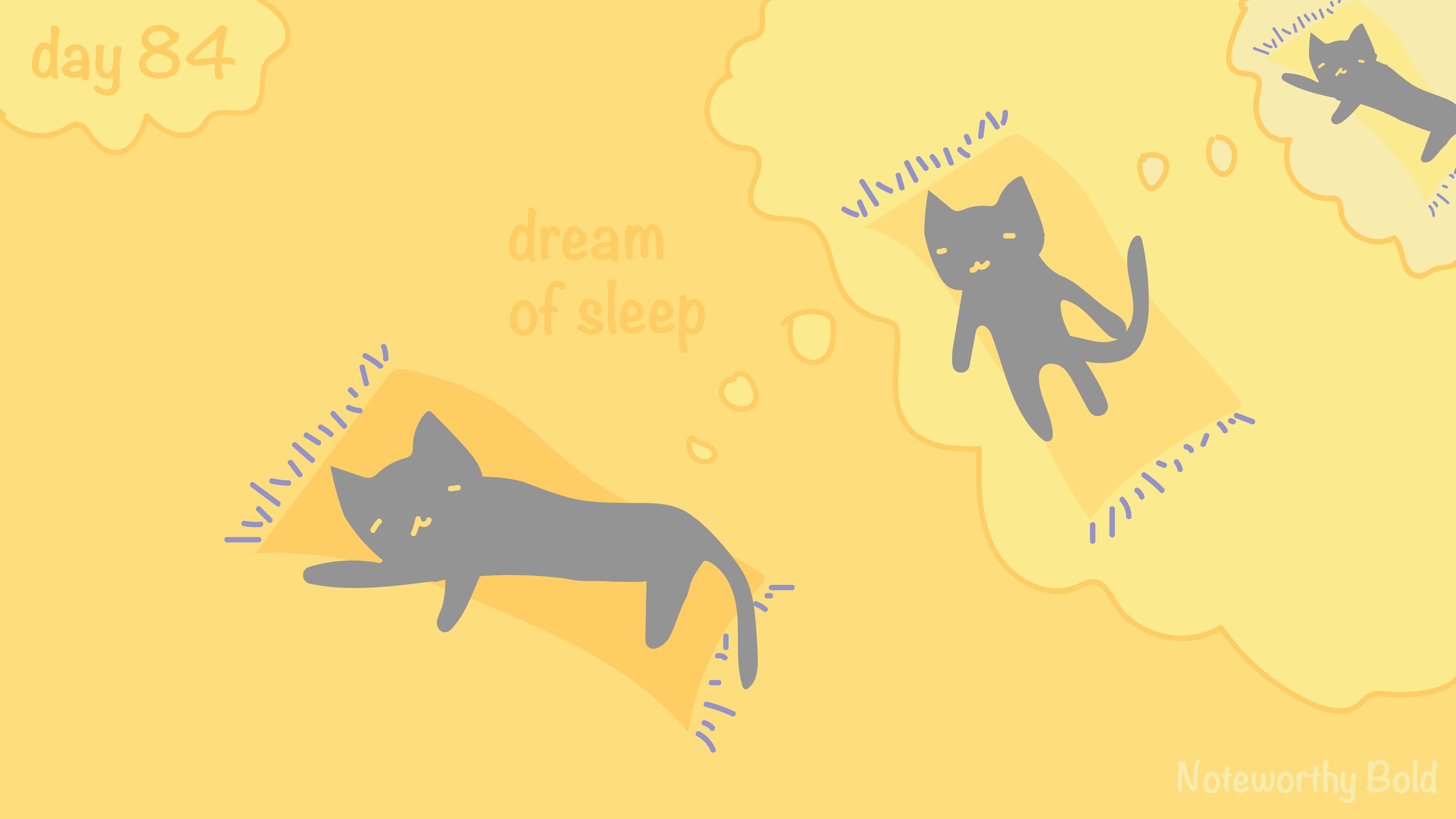[cat]day8-04