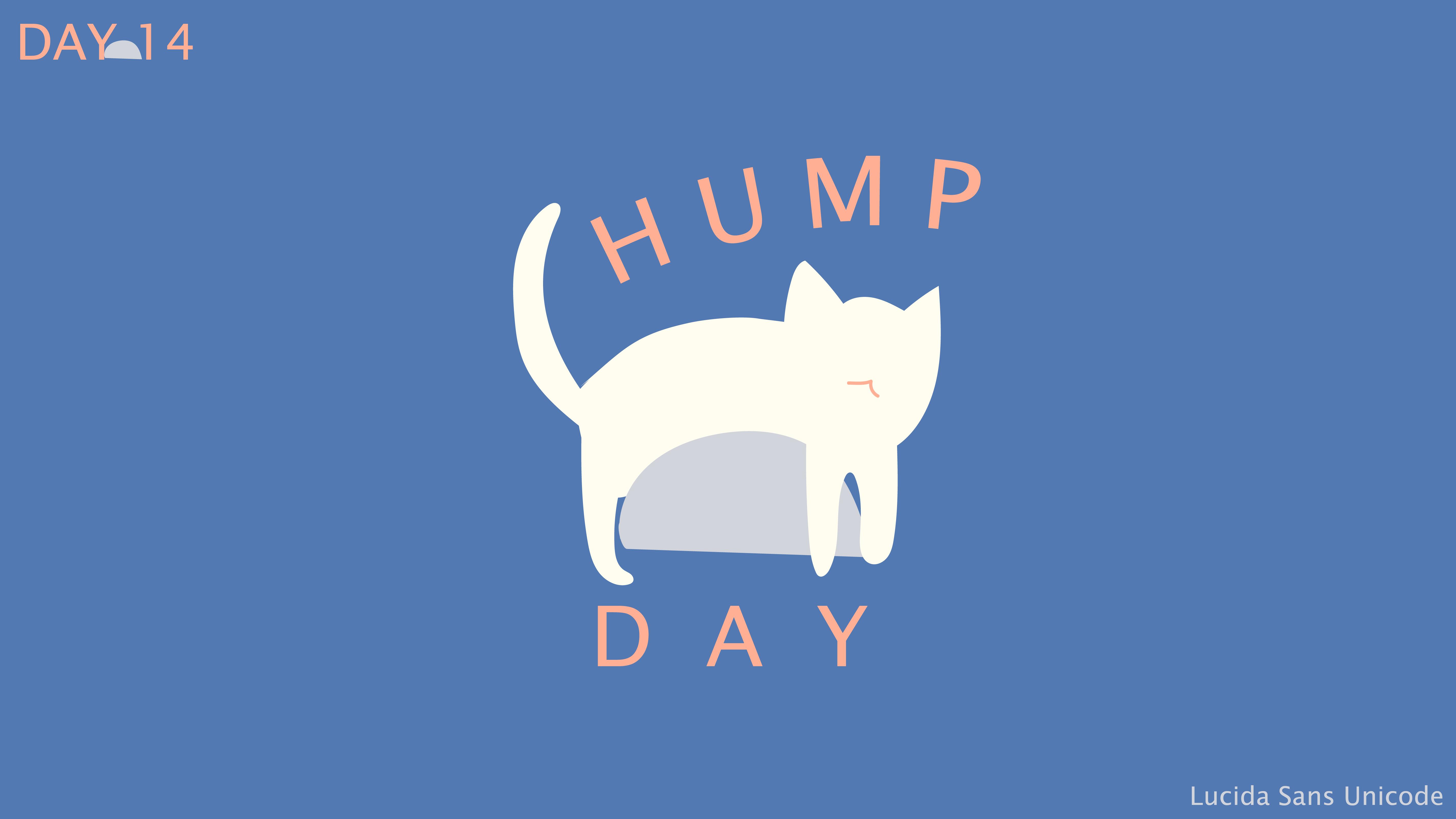 [cat]day1-14