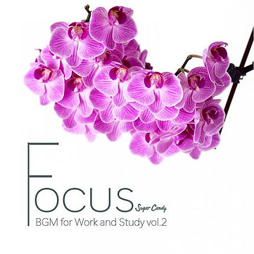 """FOCUS """"BGM for Work and Study"""" vol.2"""