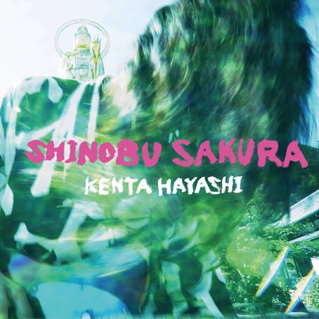 KENTA HAYASHI 最新シングル「Shinobu Sakura」5月31日リリース!MVも公開開始!