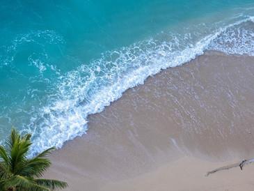 特集:コロナ禍での自粛。音楽で気軽に楽しむハワイ旅行!