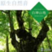 白神山地 〜原生自然音〜