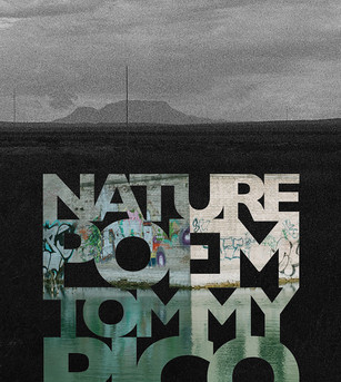 """I Can't Write a Nature Poem"": Beyond Nature and Tommy Pico's Climate Arts"