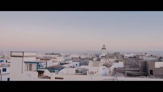 Bird City (Essaouira)
