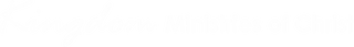 Kingmin Logo - PNG.png
