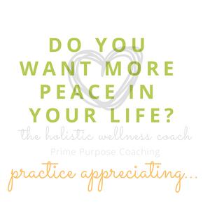the holistic wellness coach
