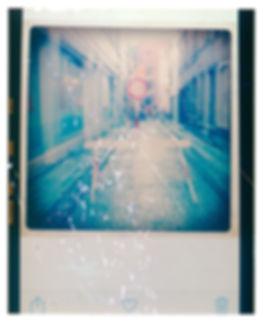 ipigeon-danstaveley.com bruge 2 e6.jpg