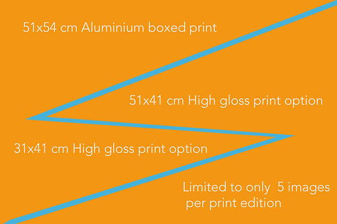 print options banner.jpg