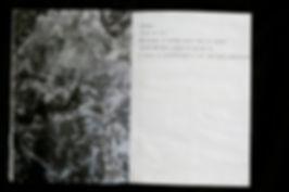 buried book page.jpg
