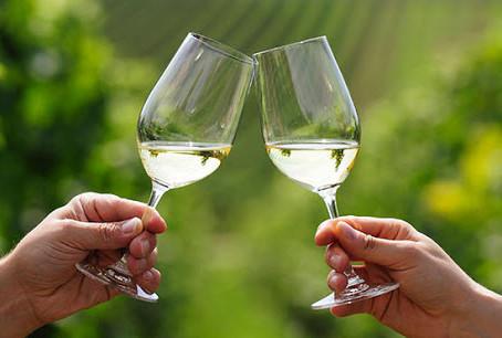 Amar el vino es beber con moderación...