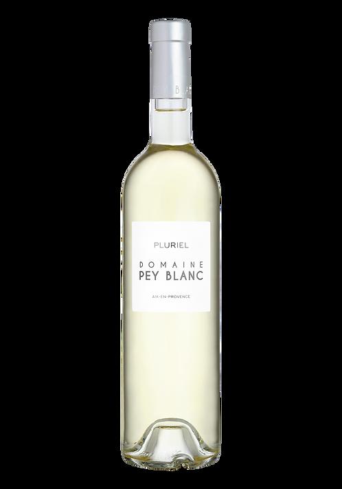 Vino blanco Domaine Pey Blanc