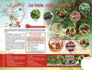 cote_cuisine.jpg