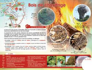 bois_chauffage.jpg