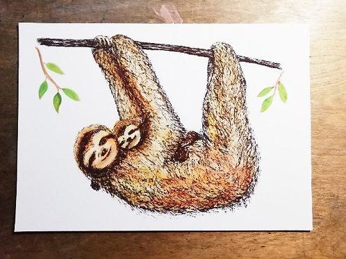 Unframed A4 Sloth Giclée Print