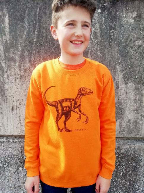 Velociraptor Dinosaur Unisex Children's Sweatshirt