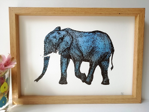 Unframed A4 Elephant Giclée Print