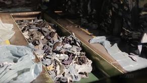 Recycled Denim Process