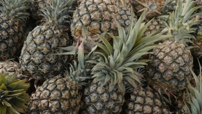 Pineapple wars