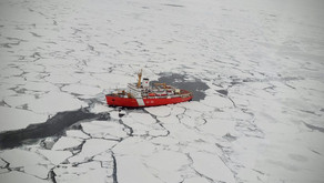 Ocean Wise study: Synthetic fibers are invading the Arctic
