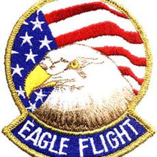 USAF Eagle Flight
