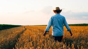 Can Regenerative Farming Combat Climate Change?