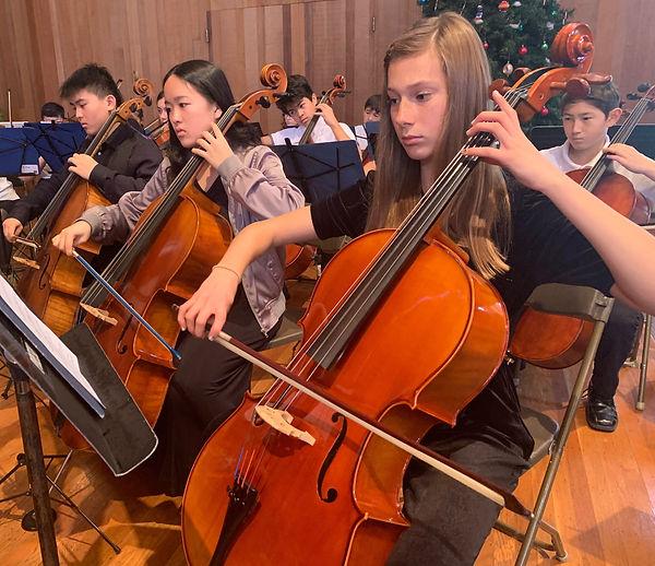YPCO Cello