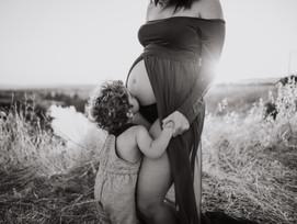 maternidad por observa y captura