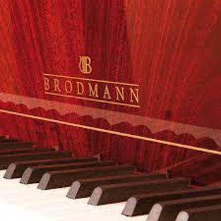 brodmann piano brand
