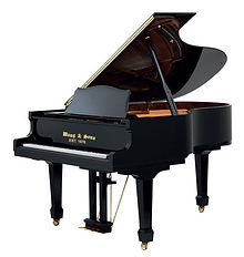 Come and experience for yourself why thousands have purchased their instruments from Dave and maybe you too will make a friend for life. Pre Owned Organs and Pianos, Digital Pianos, Wang & Sons, Sauter Pianos, Petrof pianos for sale.