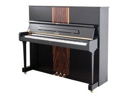 "P 125 F1 Palisandr Upright Piano 48"""