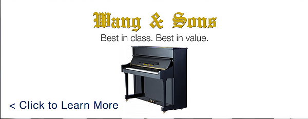 wand & sons brand made pianos