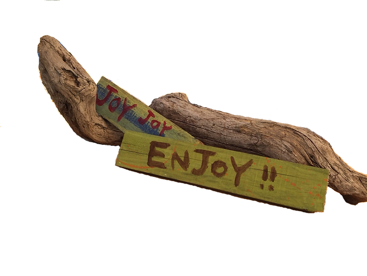 t.enjoy[.png
