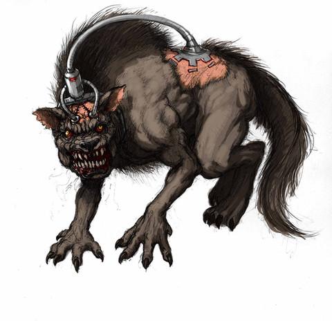 Theus dog