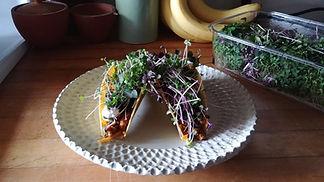 microgreen tacos.jpg