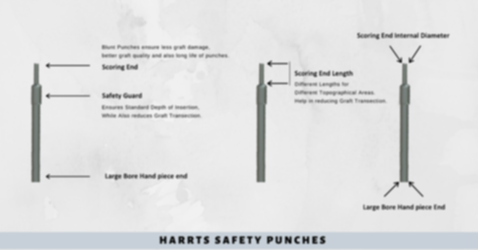 HARRTS Safety Punches (2).png