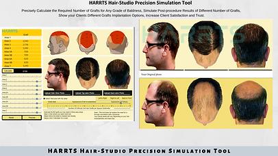 HARRTS Hair-Studio Precision Simulation