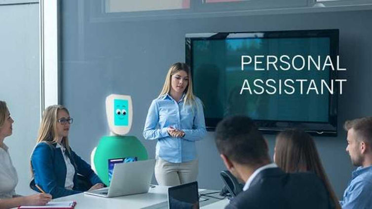 Buzz Humanoid Robot Personal Assistant