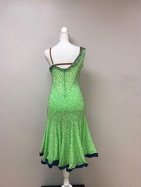 Dress 139 Back.jpg