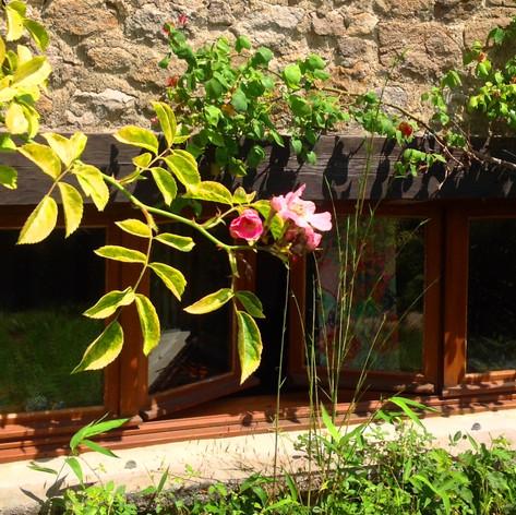 Grote raam met uitzicht op de eigen tuin